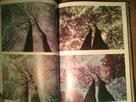 prodam-knigu-fotografirovanie-zhivoy-prirody-k-preston-mefem1985-goda-id561948.html Image1039726