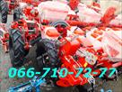 UB image 1385418