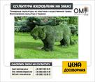 topiarnye-skulptury-topiarnye-figury-na-zakaz-izgotovlenie-topiarnykh-skulptur-id553760.html Image987572